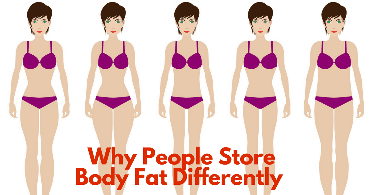 Why People Store Fat In Different Parts Of The Body
