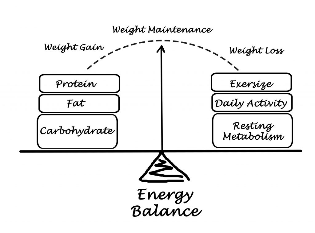 Energy balance and how it makes you regain weight